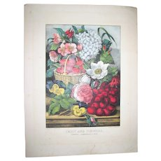 Original Currier and Ives Lithograph Print - Fruit and Flowers, Cherries, Strawberries and Rose