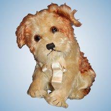 "10"" Vintage Steiff Molly Dog"