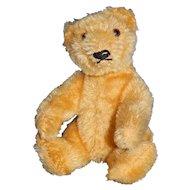 "6"" Vintage Golden Steiff Teddy Bear"