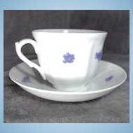 19th Century Grandmother's China or Chelsea Porcelain Cup and Saucer Signed Addersley