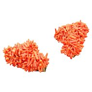 1930's Spezzati Branch Coral Dress Clips Dozens of Pieces of Coral