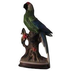 Large Japan Parrot Statue Figurine