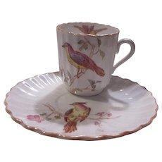 Spode Copelands Demitasse Cup Saucer Birds