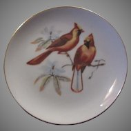 Red Cardinals Birds Collectors Plate Fine Bird Porcelain China Art