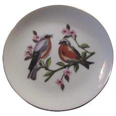 Blue Bird Plate Birds Porcelain Art