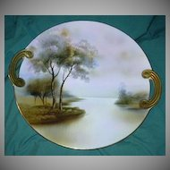 Noritake Hand Painted Cake Plate Beautiful Porcelain China Art