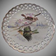Birds Hand Painted Decorative Plate Signed Pierced Borders Fine Porcelain Bird Art