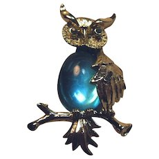 Owl Pin With Lustrous Aqua Blue Belly
