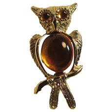 Old Small Owl Bird Pin Golden Belly