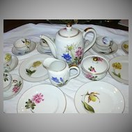 Selb Bavaria Tea Set Kutschenreuther Schlottenhof Hand Painted Flowers Set 12