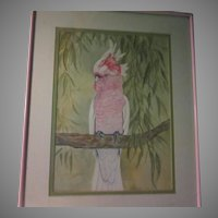 Pink Cockatoo Parrot Original Signed Watercolor Painting 1985