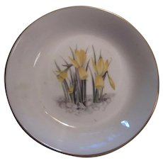 Royal Worcester English Bone China Miniature Plate Pin Dish Daffodils