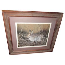Charles Frace Old Print My Friend Eastern Cottontail Bunny Rabbit Framed Art
