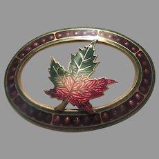 Old Brooch Fine Enamel Maple Leaf 1909