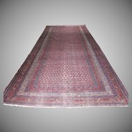 Antique Seraband Malayer Oriental Persian Rug 5'8 by 12'