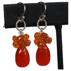 Carnelian & Mexican Opal Dangle Earrings
