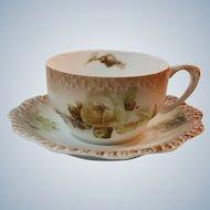 Silesia Poland Circa 1890 Porcelain Cup and Saucer