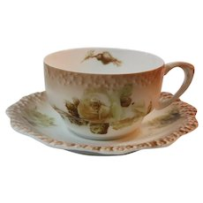 Silesia Poland Circa 1890 Porcelain Cup and Saucer