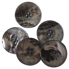 5 Buttons Natural Large Beautiful Mother of Pearl MOP