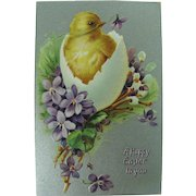 Tuck's Easter Post Card Easter Chick With Violets