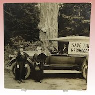 Save The Redwoods League Photo Circa 1918