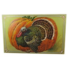 Thanksgiving Greeting From 1907 Postcard