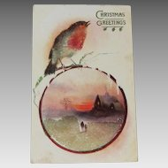 Christmas Sparkly Chirpy 1909 Tucks Post Card
