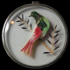 Victorian Pendant Glass Enclosed Bird Real Feathers