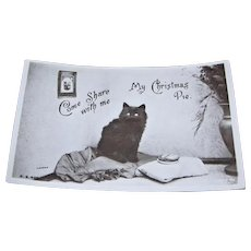 Black Cat Real Photo Post Card by Landor