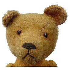 c.1915 Humpback Swivel Head Teddy Bear with Unusual Expression - Red Tag Sale Item