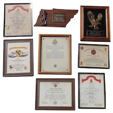 1st Calvary Division Awards and Declarations Vietnam