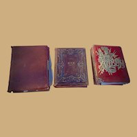 Three Victorian Photo Albums 247 Cabinet,CDV & Tintypes Minnesota Family Well identified
