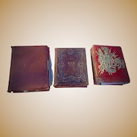 Three Victorian Photo Albums 247 Cabinet,CDV & Tintypes Minnesota Family Well identified