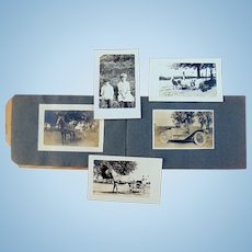 Ginormous Horse Equine Farm Remington, Indiana Jaspar County Photo Album