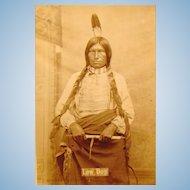 D.F,Barry Cabinet Photograph of Low Dog Oglala Lakota Chief Bismark Dakota Territory