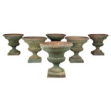 French Cast Iron Garden Urn Planters Set of 6
