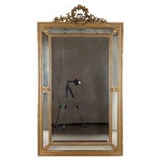 French Louis XVI Style Parclose Mirror
