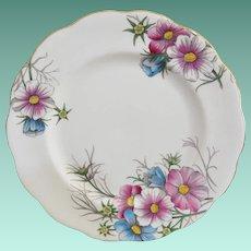 """Royal Albert """"Cosmos"""" NO. 10 Salad Plate"""