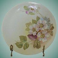 R.S. Tilowitz Silecia Porcelain Plate - Pink Dogwood Flowers -Blue Backstamp