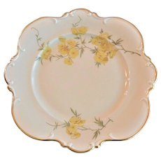 "Hutschenreuther Selb, Bavaria ""Sylvia""  No. 7199 Salad Plate"