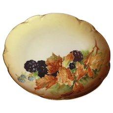 Antique Handpainted JHR Hutschenreuther Bavaria Charlotte Blackberries Plate