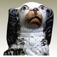 Staffordshire Pottery Spaniel 19thCentury Black Painted Gold Chain Padlock Hair Grey Yellow Eyes Salmon Pink Mouth Nose.
