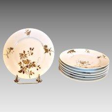 """Haviland Limoges Set 7 Plates 8 ½"""" Old Blackberry c 1876 - 1889"""