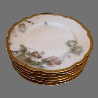 French Haviland Limoges Set 6 Fancy Elegant Lunch Plates Feu de Four c 1893