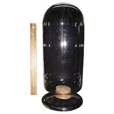 "Super 14 inch  ""Show Jar"" Blown Glass for Apothecary or Scientific Specimens Circa 1860-80 !!!"