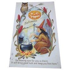 Vintage Halloween Postcard series 216 F