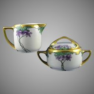 "Rosenthal Bavaria Violet Motif Creamer & Sugar Set (Signed ""Burch""/c.1903-1930) - Keramic Studio Design"