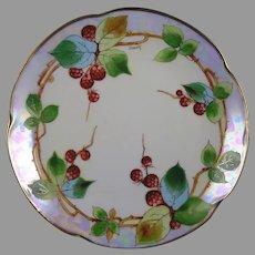 "Donath Studios Raspberry Design Plate (Signed ""Donath""/c.1910-1915)"