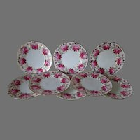 8 Cauldon Hand Painted Plate with Roses, Gold Gilding, Signed Harrison