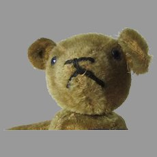 Antique Mohair Teddy Bear, Much Loved, Needs New Home and Care